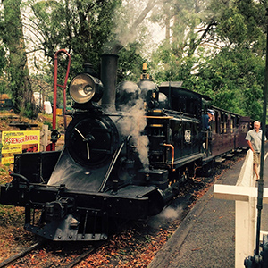 The Puffing Billy