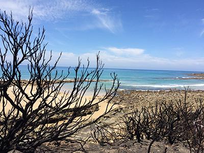 The Australian Sky and Sea