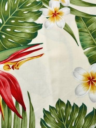 Bandana Bird of Paradise