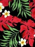 Bolero Red Palm