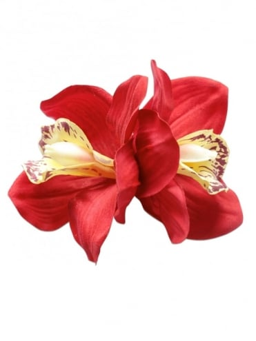 Pin-Up Double Orchid Bright Red