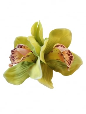 Pin- Up Double Orchid Lime