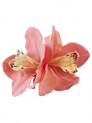 Pin - Up Double Orchid Pink