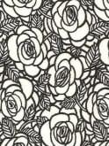 Raglan Black White Rose
