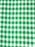 Rio Top Green Gingham